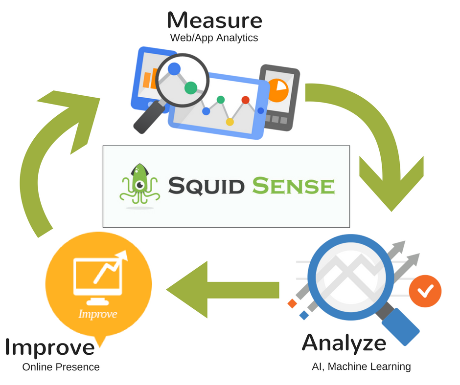 squid-sense-graphic